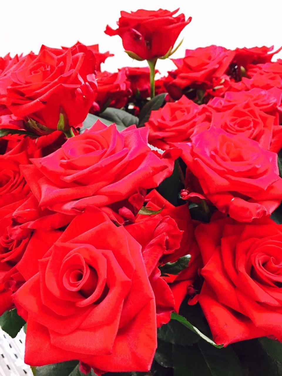 zestig rode rozen Foodblogger Foodinista vijf jaar samen