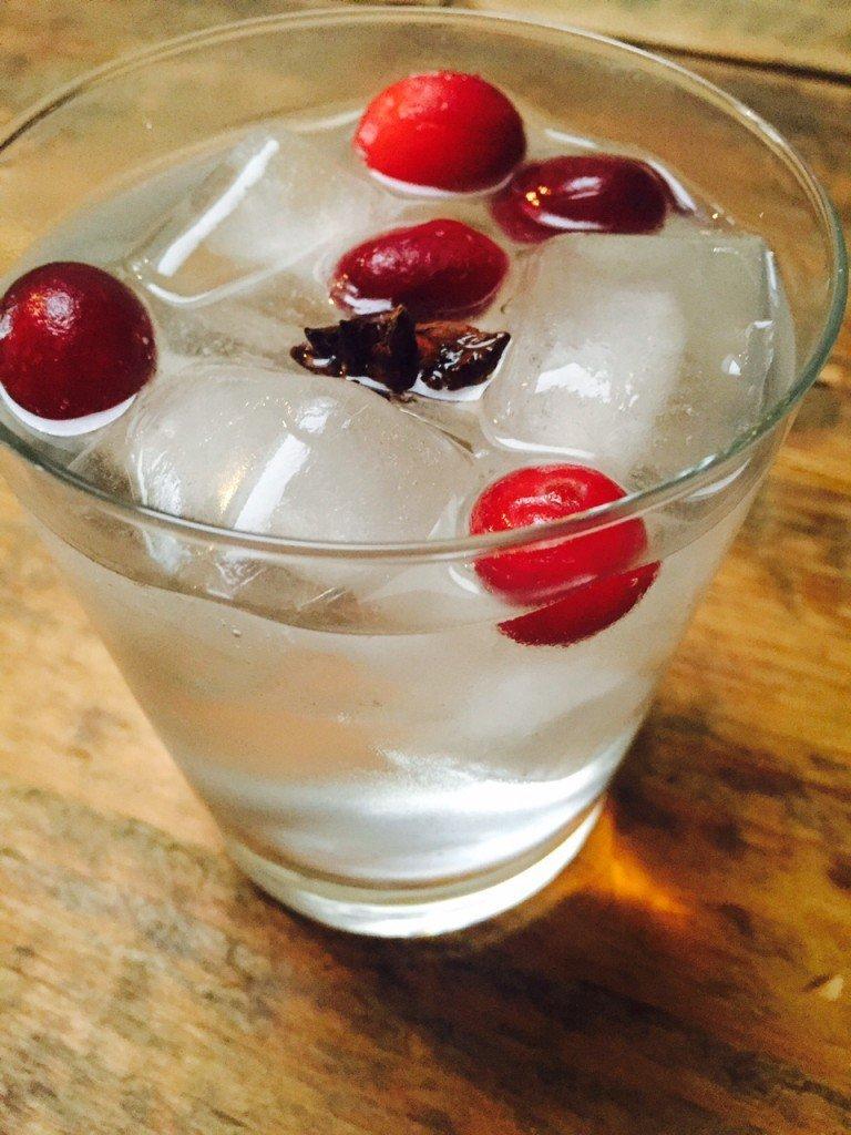 Kerst gin tonic met cranberries en ster anijs recepten foodblog Foodinista