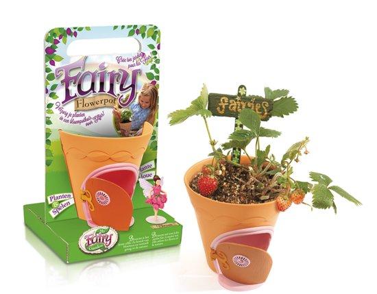 Winnen my Fairy Garden Flower Pot give away blog Foodinista