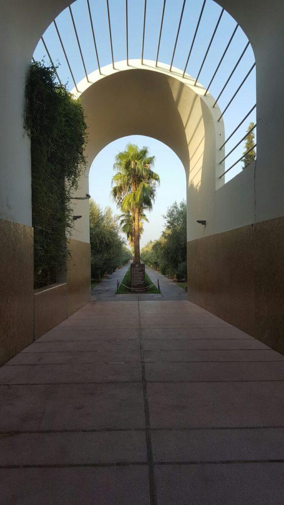 Afscheid van prachtig Marokko blogger Foodinista
