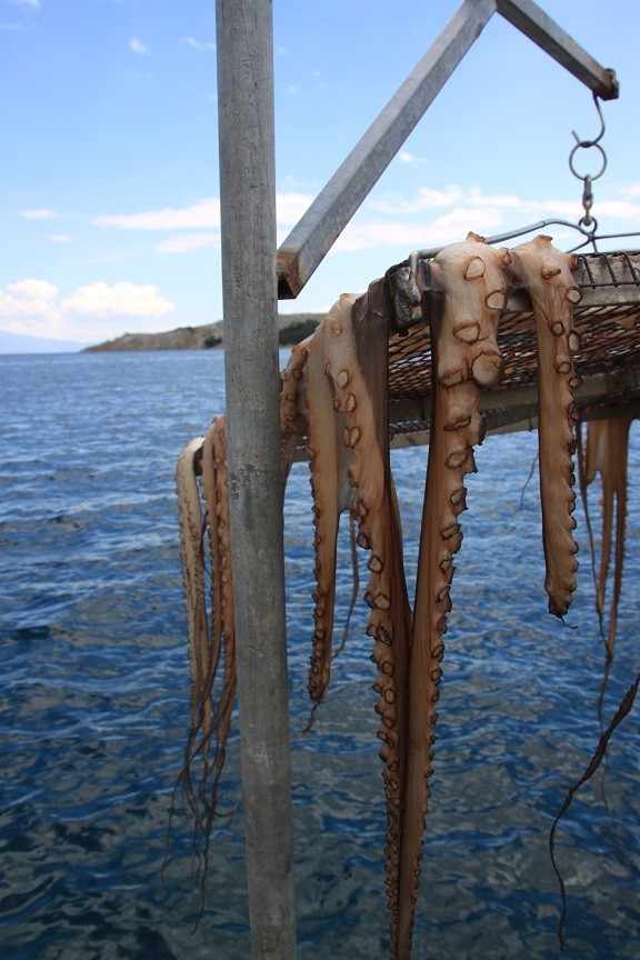 Octopus en vis drogen boven de zee in de zon Foodie op Chios Griekenland Foodblog Foodinista