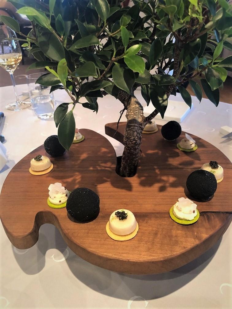 Le Chabichou amuses De Boom des Levens Restaurant tips in Frankrijk Foodblog Foodinista