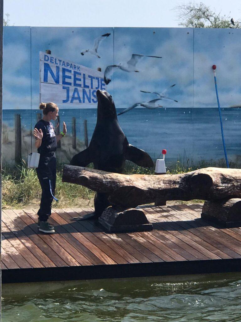 Waterplezier bij Neeltje Jans in Zeeland - Leuke dingen doen met kinderen