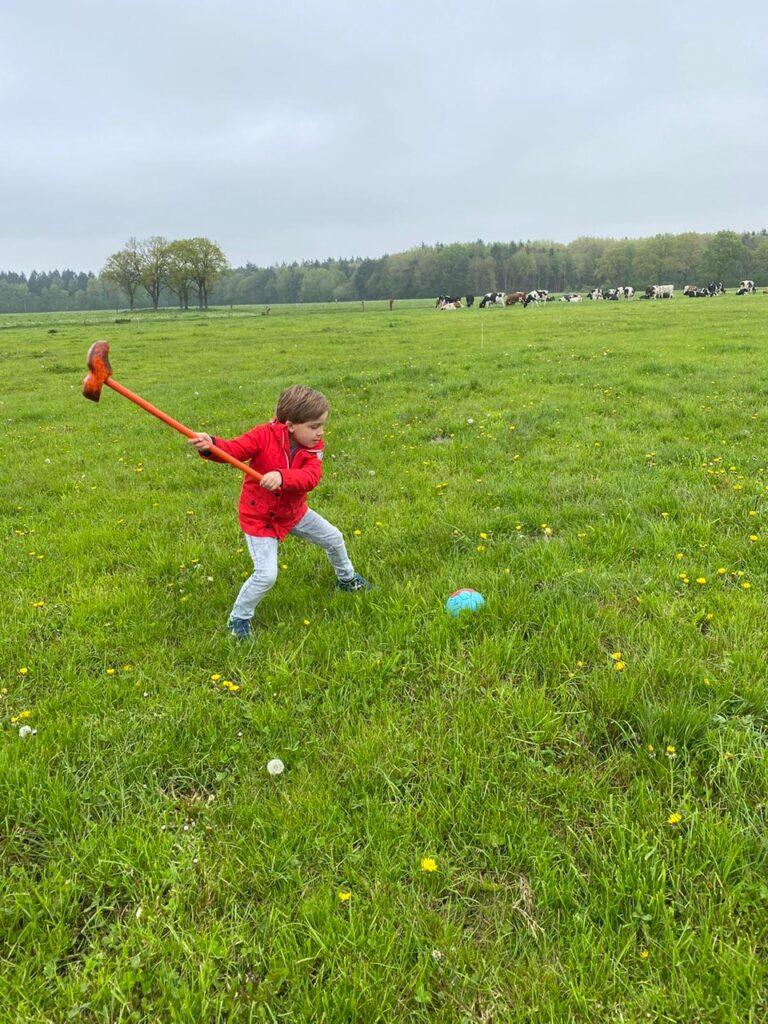 Boerengolf bij Boerderij Sonneclaer - Vakantie tips in Drenthe