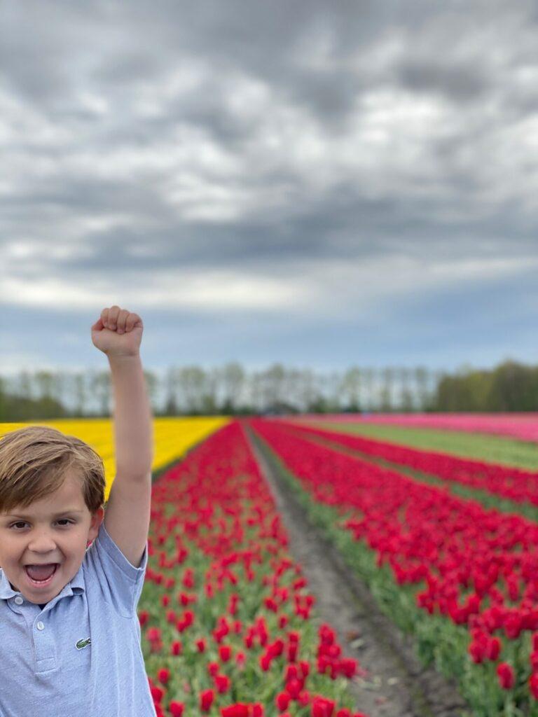 Bloembollenvelden in Drenthe - Mooie plekjes in Drenthe